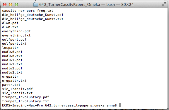 Terminal window listing .txt and .pdf files in the directory