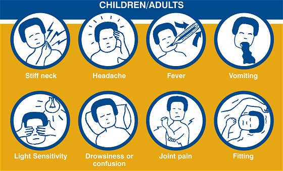 adult-meningitis-symptoms